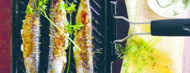 grillpan inductie