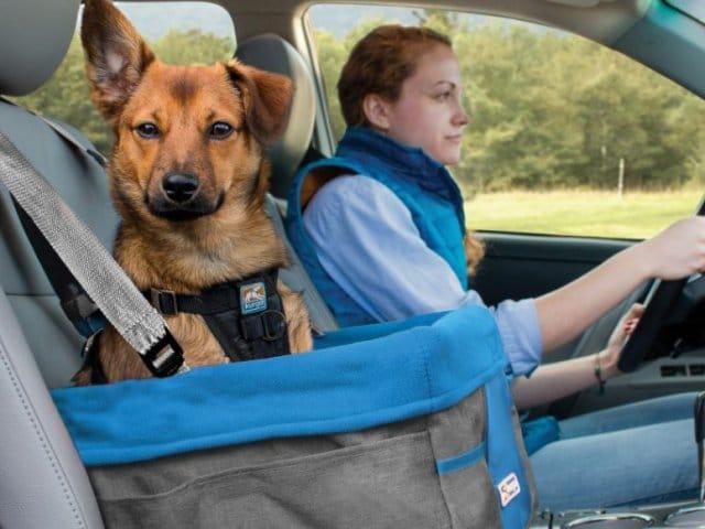 beste honden autostoelen