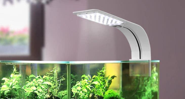 beste aquariumverlichting